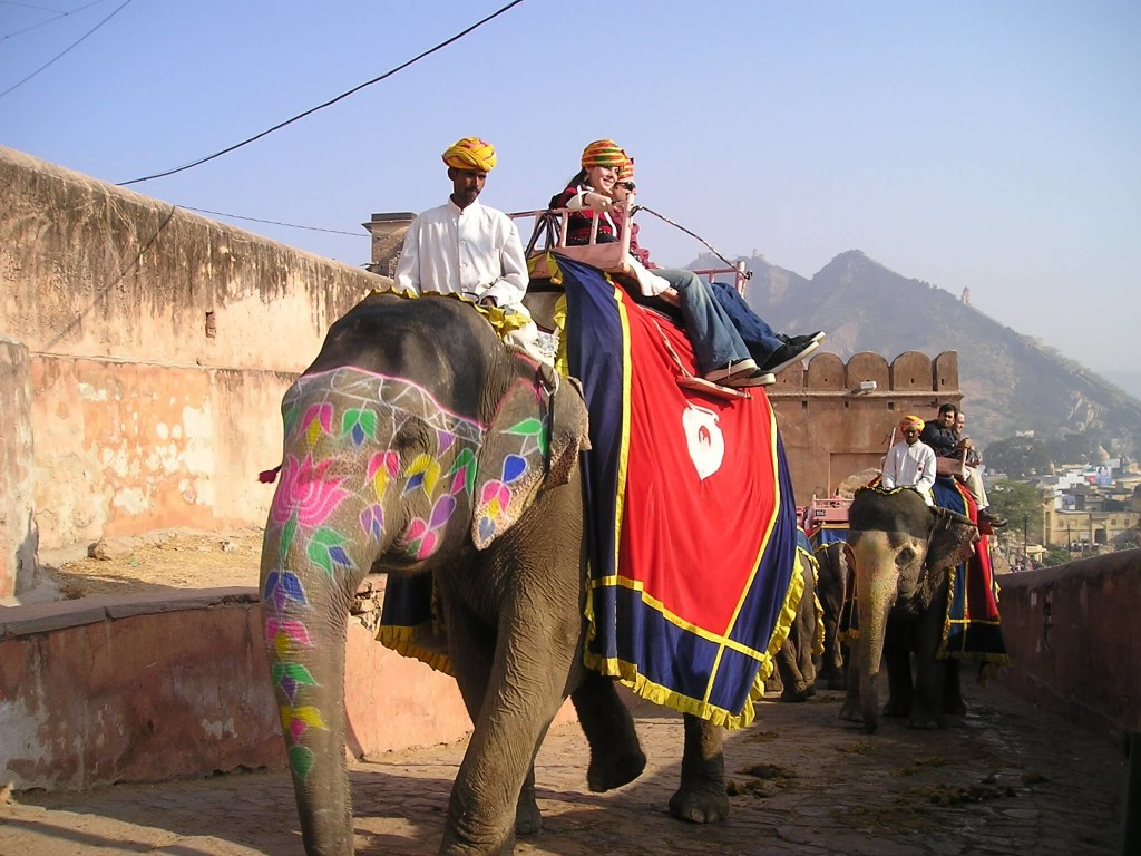 india-elephant-unique-transportation